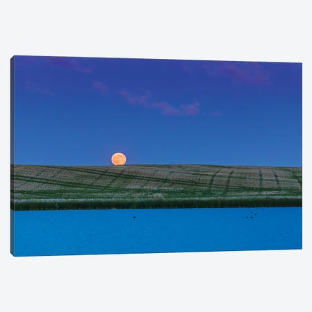 Rull Moon Rising Over A Prairie Pond In Alberta, Canada. Canvas Print #TRK3120} by Alan Dyer Canvas Artwork