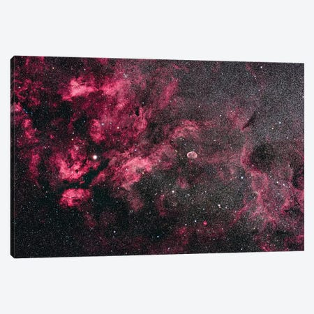 The Cygnus Star Cloud And Nebulosity. Canvas Print #TRK3196} by Alan Dyer Canvas Wall Art