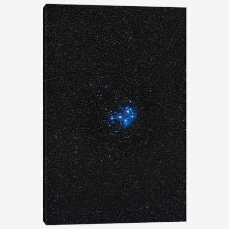 The Pleiades Star Cluster. Canvas Print #TRK3236} by Alan Dyer Art Print