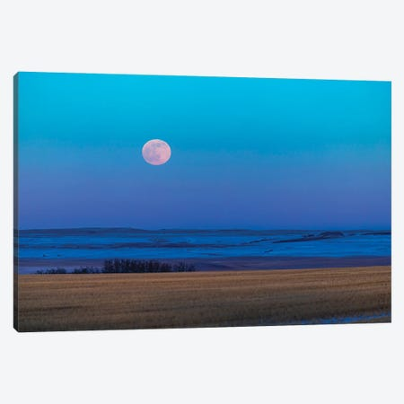 The Rising Full Moon Over The Alberta Prairie In Canada. Canvas Print #TRK3240} by Alan Dyer Canvas Print