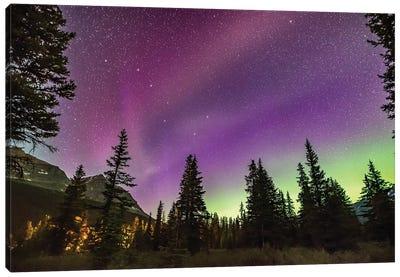 The Unusual Steve Auroral Arc Across The Northern Sky At Bow Lake, Banff National Park, Alberta, Canada. Canvas Art Print
