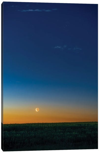 The Waning Crescent Moon Rising In Close Conjunction With Aldebaran. Canvas Art Print
