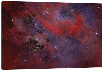 Dark Nebula P91 Is A Dust Formation In The Constellation Cygnus. Canvas Art Print