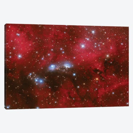 Ngc 6914 Is A Reflection Nebula In The Constellation Of Cygnus. Canvas Print #TRK3375} by Lorand Fenyes Canvas Art