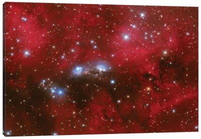 Ngc 6914 Is A Reflection Nebula In The Constellation Of Cygnus. Canvas Art Print
