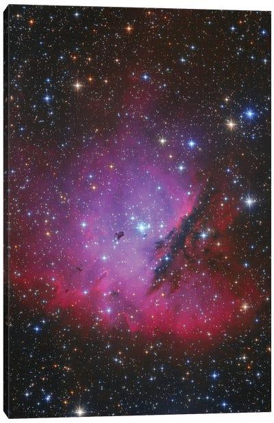 Pacman Nebula, Ngc 281. Canvas Art Print
