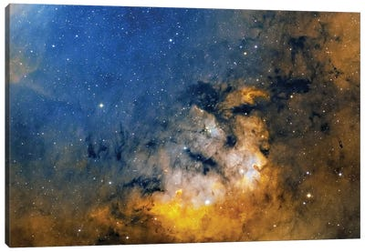 Starforming Region Known As Cederblad 214. Canvas Art Print