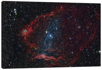 Flying Bat Nebula (Sh2-129), And The Squid Nebula (Ou4). Canvas Art Print