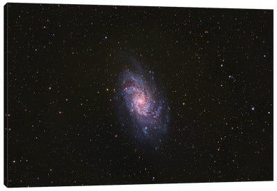 Messier 33, The Triangulum Galaxy. Canvas Art Print