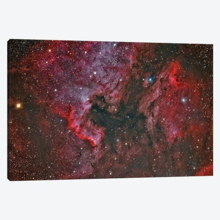 Ngc 7000 North America Nebula And Ic 5070 Pelican Nebula. Canvas Print #TRK3407} by Reinhold Wittich Canvas Wall Art