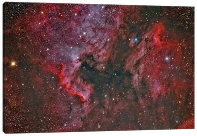 Ngc 7000 North America Nebula And Ic 5070 Pelican Nebula. Canvas Art Print