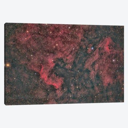 North America Nebula Canvas Print #TRK3408} by Reinhold Wittich Canvas Print