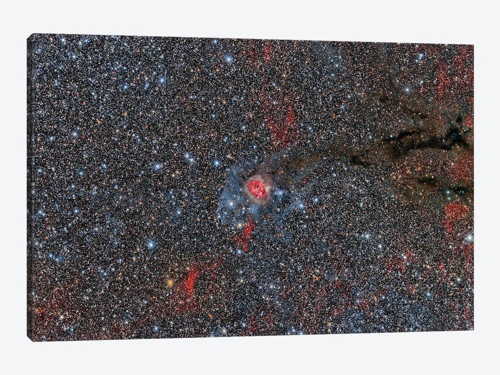 Sh2-125 Cocoon Nebula by Reinhold Wittich 1-piece Canvas Art Print