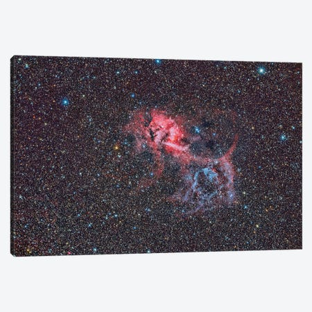 Sh2-132, The Lion Nebula. Canvas Print #TRK3412} by Reinhold Wittich Canvas Art