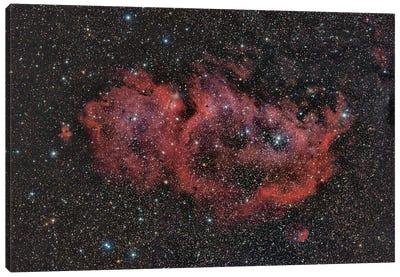 Sh2-199, The Soul Nebula. Canvas Art Print