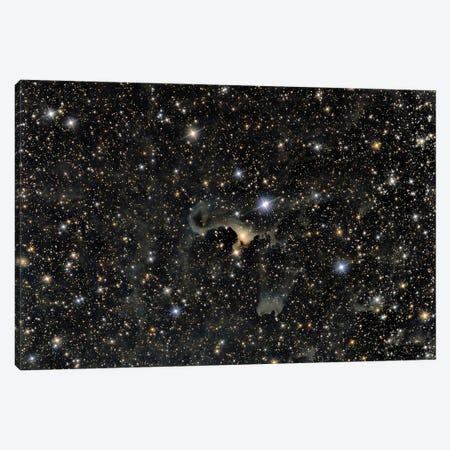 Vdb 141, The Ghost Nebula. Canvas Print #TRK3415} by Reinhold Wittich Art Print