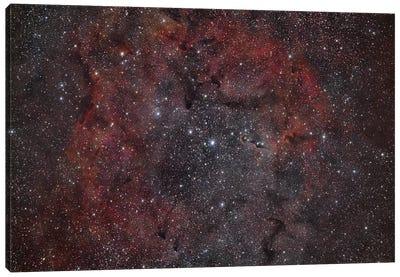Vdb 142, The Elephant Trunk Nebula. Canvas Art Print