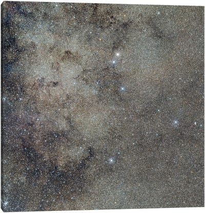 A Starry Field In The Milky Way Around Emission Nebula Ced 122. Canvas Art Print