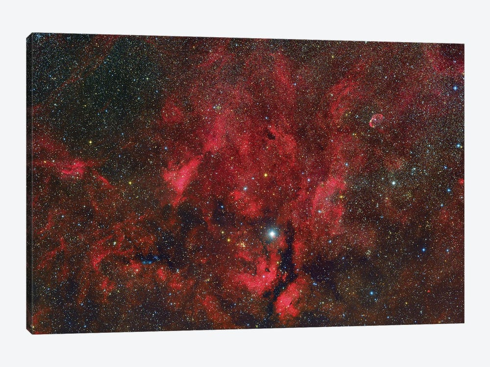 A Wide-Field View From The Propeller Nebula To The Crescent Nebula. by Roberto Colombari 1-piece Canvas Wall Art