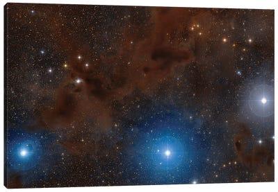 Dark Nebulae In Lupus Constellation. Canvas Art Print