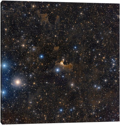 The Ghost Nebula In The Constellation Cepheus. Canvas Art Print