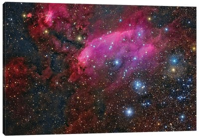 The Prawn Nebula In The Constellation Scorpius. Canvas Art Print