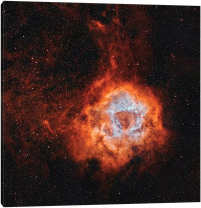 The Rosette Nebula, With Open Cluster Ngc 2244. Canvas Art Print