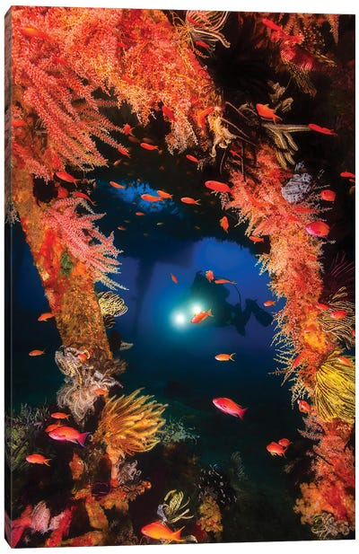 Scuba Diver Swims Through An Artifical Reef Structure In Puerto Galera, Philippines Canvas Art Print