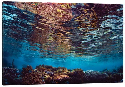 Serene Shallow Water Reef Scene With Reflections In Raja Ampat, Indonesia Canvas Art Print