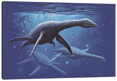 A Group Of The Plesiosaur Species Djupedalia Swimming By Canvas Art Print