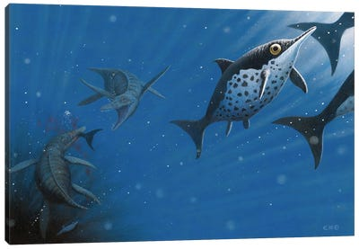 Apex Predator Pliosaurus Funkei Grabbing Hold Of A Cryopterygius Kristiansenae Canvas Art Print