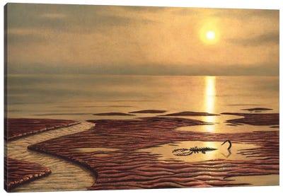 Sea Scorpion Mixopterus Kiaeri On The Beach Canvas Art Print