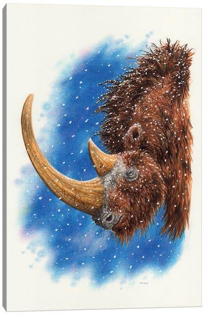 A Woolly Rhinoceros Canvas Art Print