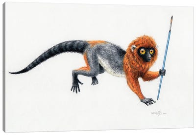 Darwinius Masillae Holding A Pencil Canvas Art Print