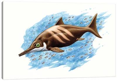 Ichthyosaurus On White Background Canvas Art Print