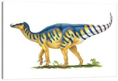 Iguanodon Dinosaur, Side View On White Background Canvas Art Print