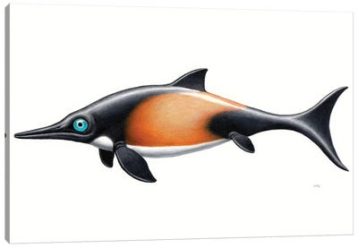 Ophthalmosaurus, Side View On White Background Canvas Art Print