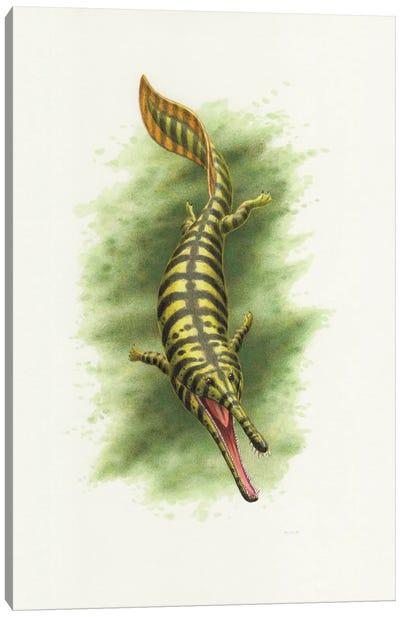 Prionosuchus, An Extinct Amphibian Canvas Art Print