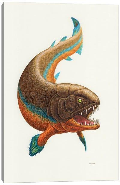 Rhizodus Prehistoric Fish, Front View On White Background Canvas Art Print