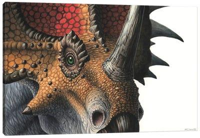 Close-up Of A Styracosaurus Dinosaur Head, Front View Canvas Art Print