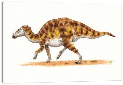 Hadrosaurus Dinosaur, Side View On White Background Canvas Art Print