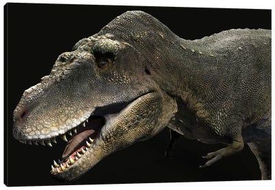 Tarbosaurus Dinosaur Canvas Art Print