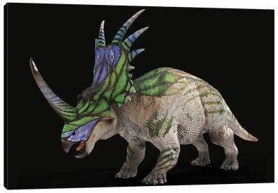 Styracosaurus Dinosaur With Colorful Neck Frill Canvas Art Print