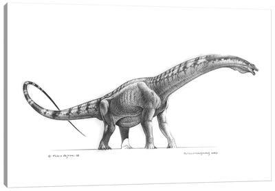 Graphite Restoration Of Futalognkosaurus Dukei Canvas Art Print