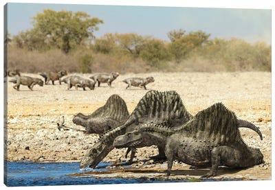 Arizonasaurus Dinosaurs Drinking Water From A Pond Canvas Art Print