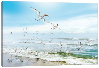 A Flock Of Pterodactyls Flying Near The Beach Looking For Food Canvas Art Print