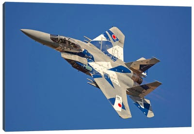 F-15DJ Eagle Of The Japan Air Self Defense Force's Hiko Kyodatai Aggressor Squadron I Canvas Art Print