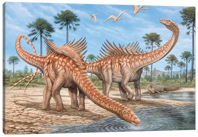 Agustinia Dinosaurs Drinking Water From A River, With Pterodactylus Flying Above Canvas Art Print