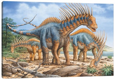 A Group Of Amargasaurus Dinosaurs Grazing On The Shoreline Canvas Art Print