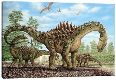 Ampelosaurus Dinosaurs Grazing On The Shoreline Canvas Art Print